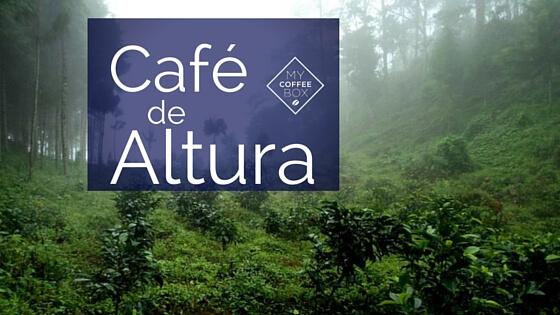 cafe de altura mycoffeebox blog de cafe
