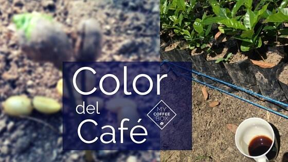 propiedades del cafe organico color del cafe