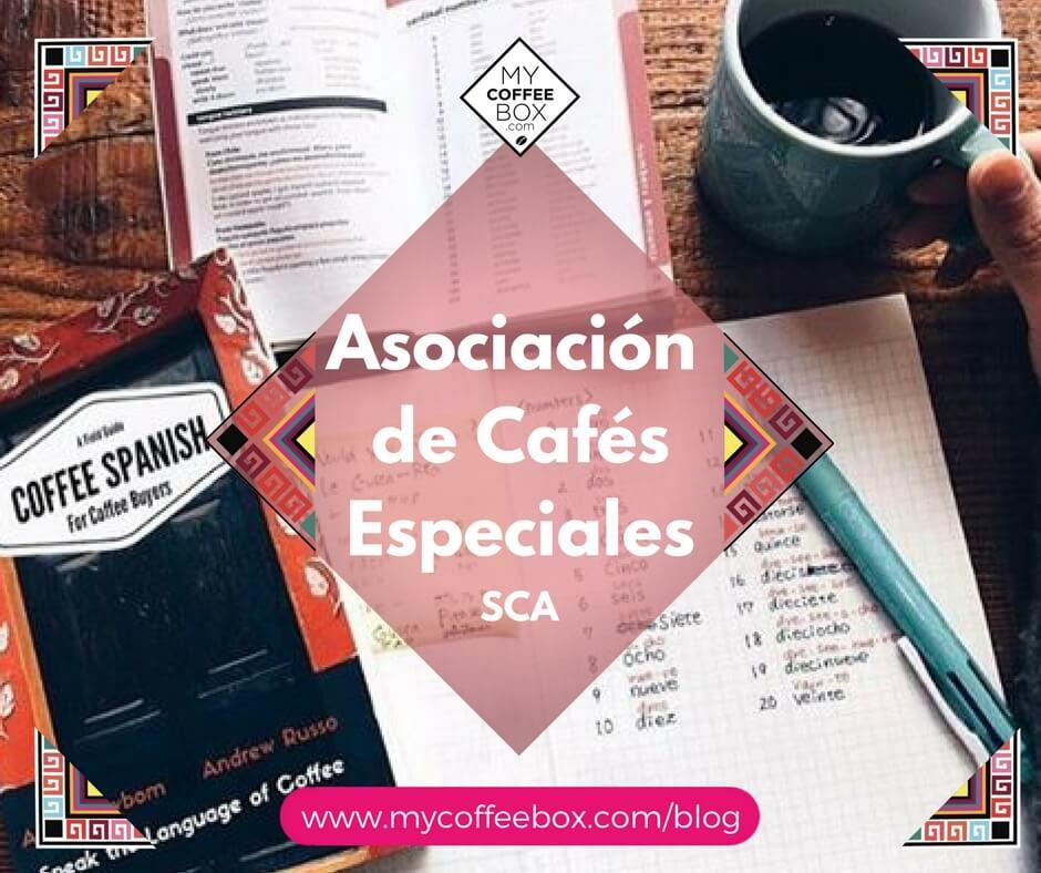 asociación-de-cafés-especiales