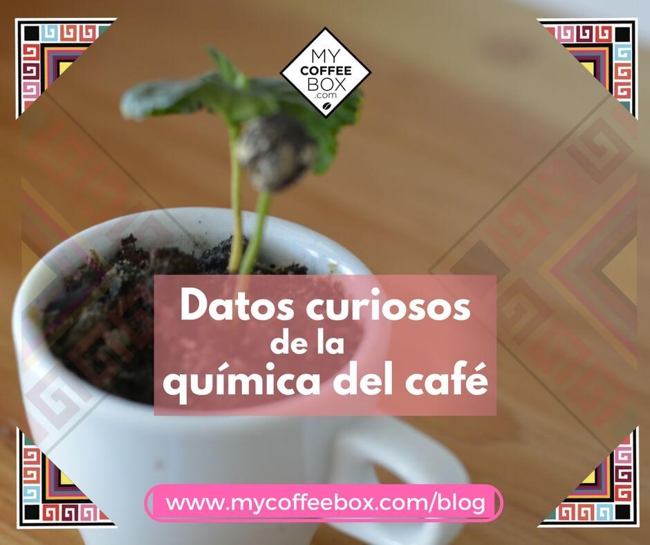 Datos curiosos de la química del café