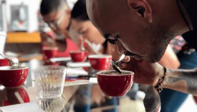 cata de cafe en tuxtla catacion taller chiapas mycoffeebox